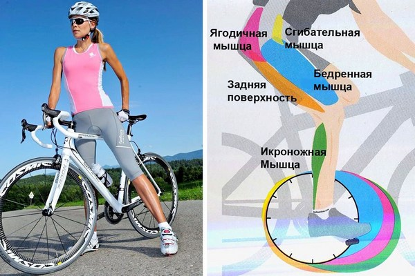 Что лучше для похудения: бег или велосипед | сайт котовского.