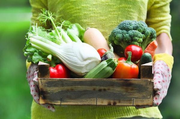 Эффективная овощная диета для похудения: отзывы, результаты и меню на неделю для диетического питания на овощах