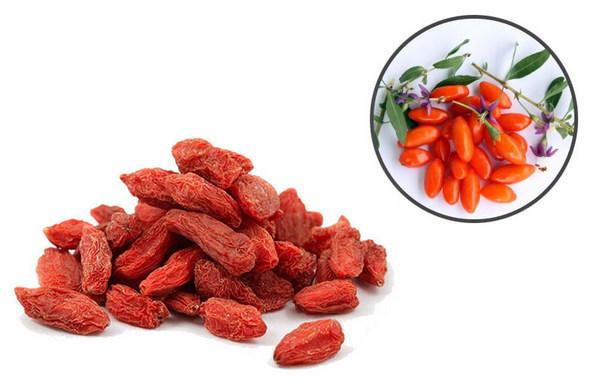 Сушеные и свежие ягоды годжи