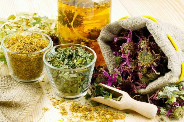 Мочегонные травы для похудения