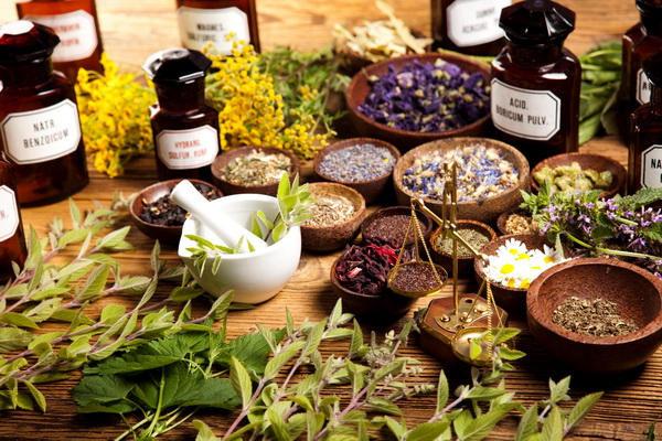 Травы для похудения, полезные свойства, особенности похудения с помощью трав