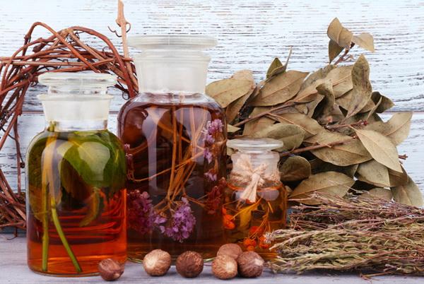 Кому и какие травы можно пить для похудения