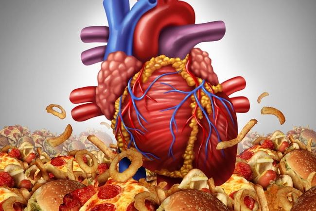 Ожирение внутренних органов когда эстетическая проблема переходит в медицинскую