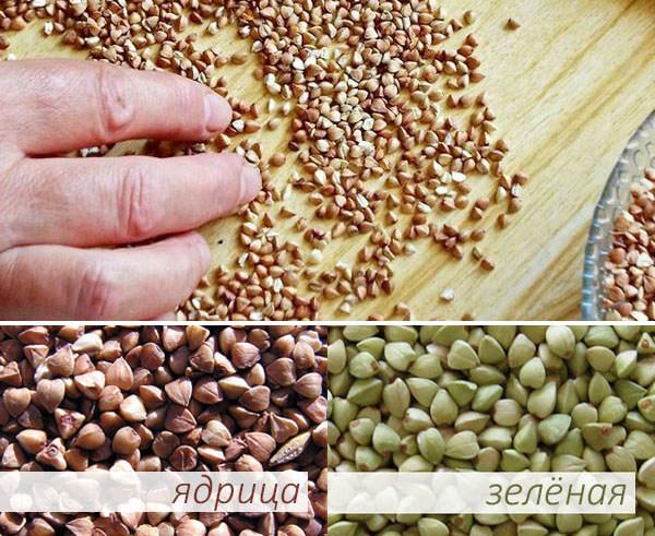 Виды гречки для похудения: ядрица и зелёная
