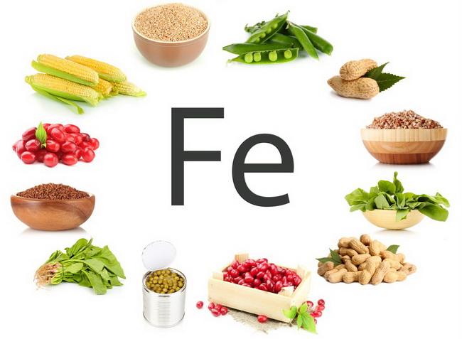 Польза и вред вегетарианства научные исследования статистика мнение врачей