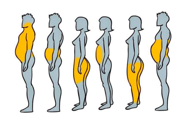 Причины лишнего веса без их устранения похудения не добиться