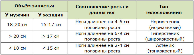 Типы телосложения людей в зависимости от объёма запястья