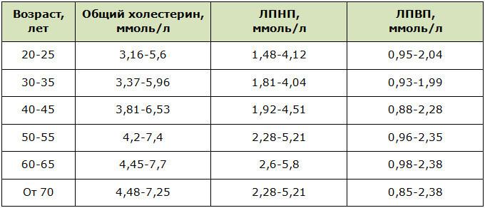 Нормы содержания холестерина в крови у женщин