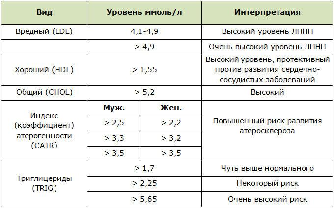 Показатели липидограммы при повышенном холестерине в крови