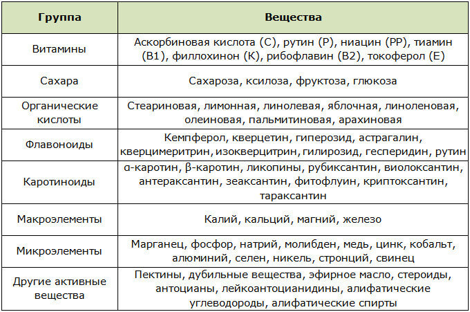 Химический состав плодов шиповника сохраняющийся и в Холосасе