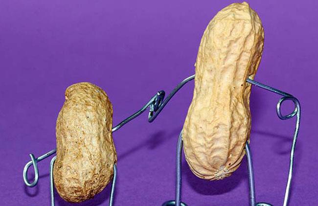 Можно ли есть арахис при диете